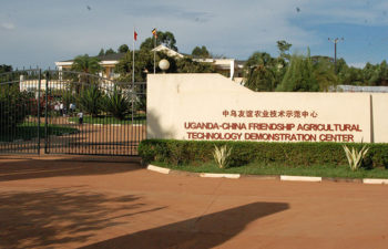 Uganda | Govt agency, Chinese firm fight over $5m fish project