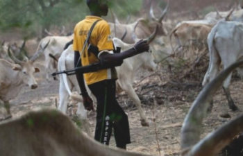 NIGERIA | HOW OIL ELITE ABANDONED THE FARMING LANDS